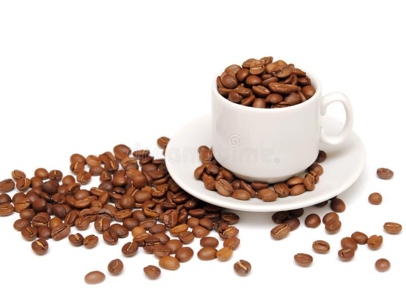 Chicchi di caffè e della tazza immagini stock libere da diritti
