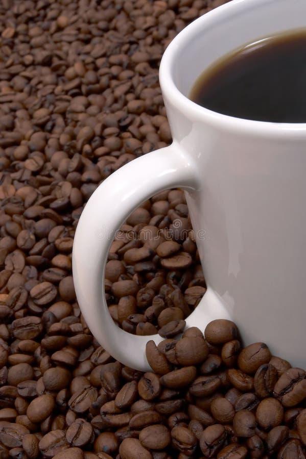 Download Chicchi Di Caffè E Fermentato Fotografia Stock - Immagine di gruppo, centinaia: 215524