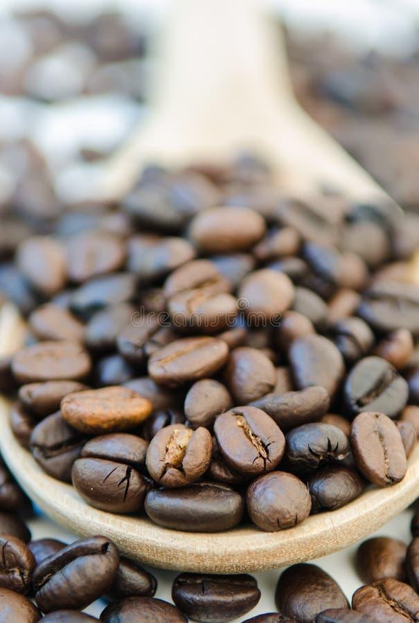 Chicchi di caffè e mestolo di legno fotografia stock libera da diritti