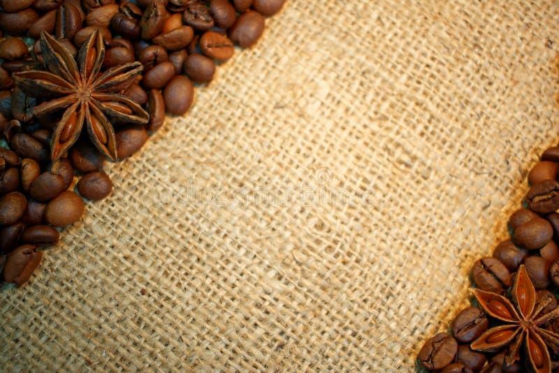 Chicchi di caffè e stelle dell'anice su tela da imballaggio fotografia stock