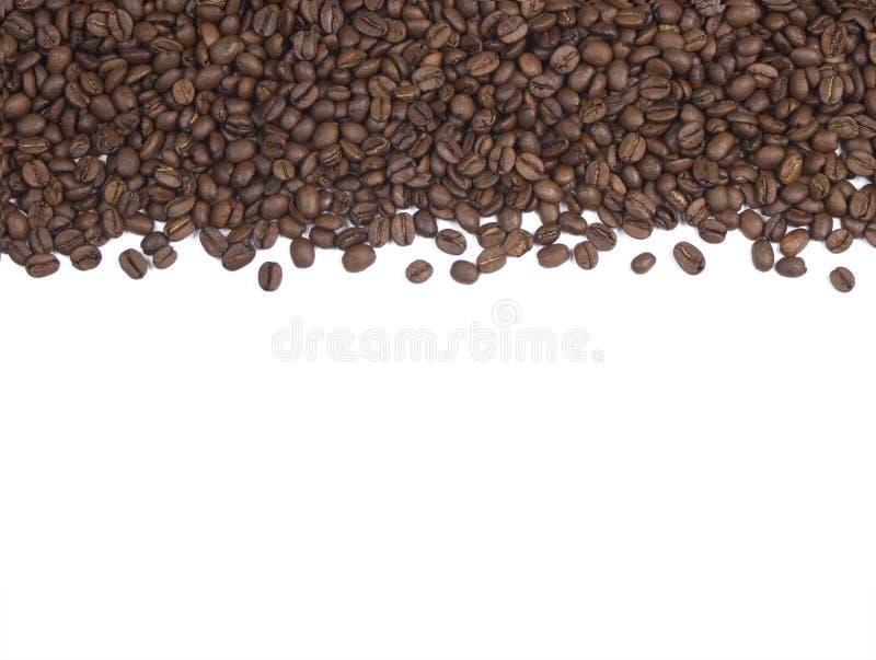 Chicchi di caffè fondo o confine fotografia stock libera da diritti