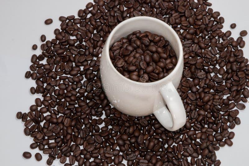 Chicchi di caffè nella vista superiore della tazza di caffè isolati su bianco fotografia stock libera da diritti