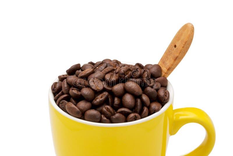 Chicchi di caffè pieni in tazza gialla immagine stock libera da diritti