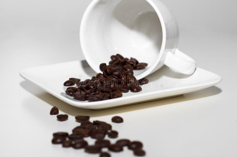 Chicchi di caffè rovesciati dalla tazza immagine stock