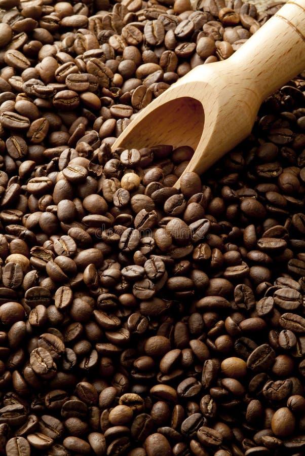 Chicchi di caffè in sacco della canapa fotografie stock libere da diritti