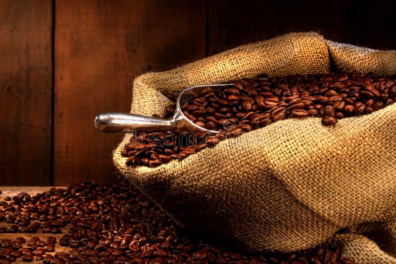 Chicchi di caffè in sacco della tela da imballaggio immagine stock