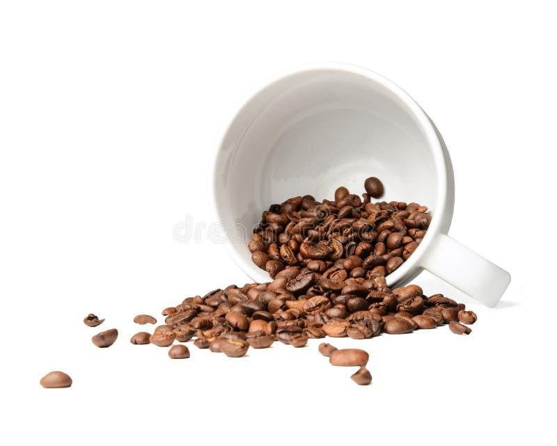 Chicchi di caffè sparsi da una tazza caduta Fondo isolato bianco fotografie stock