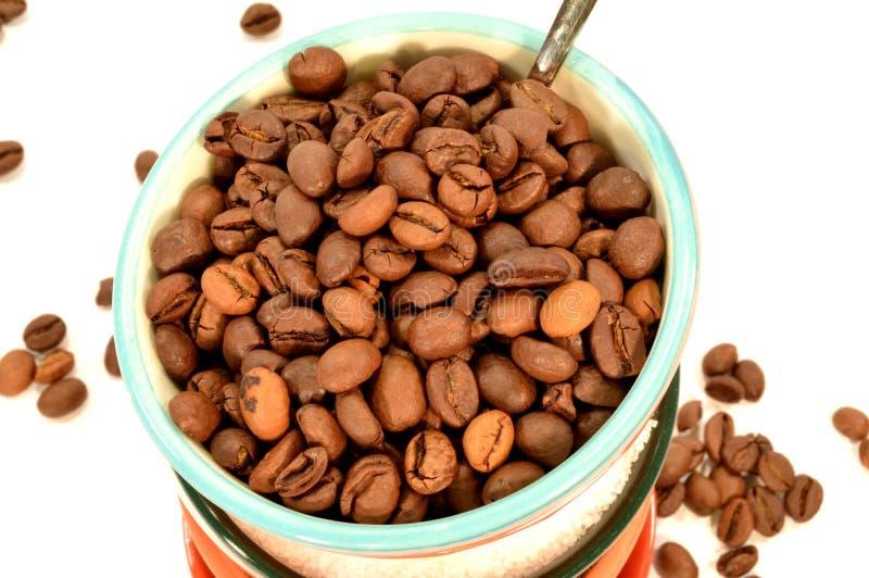 Chicchi di caffè sulla ciotola colorata immagine stock