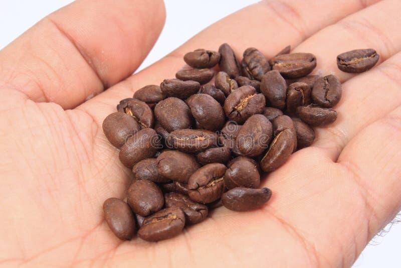 Chicchi di caffè sulla mano fotografie stock