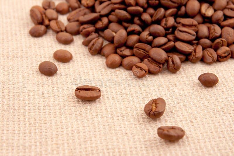 Chicchi di caffè sulla tela immagini stock