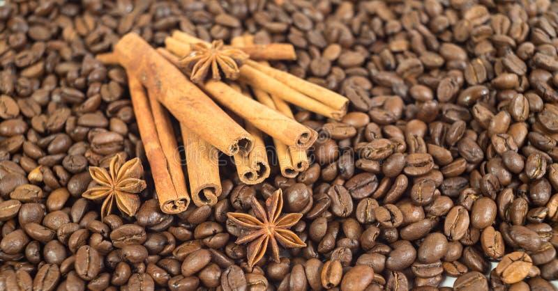 Chicchi di caffè Tre stelle dell'anice Lotti dei bastoni di cannella Sha fotografia stock libera da diritti