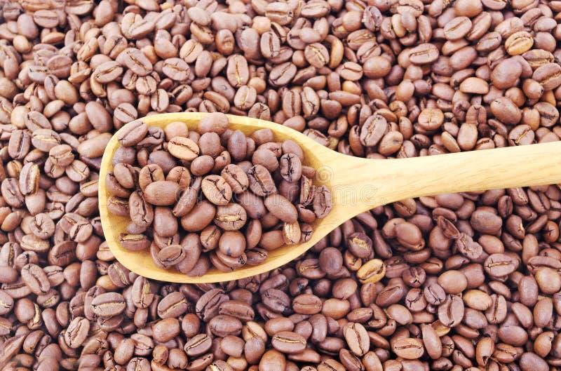 Chicchi di caffè in un cucchiaio. fotografie stock