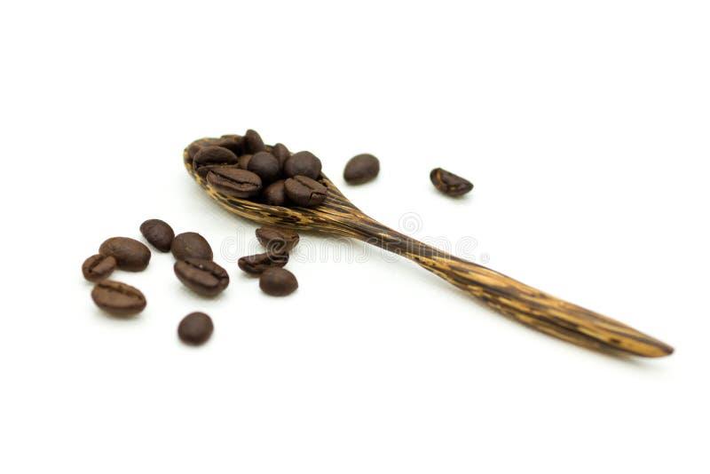 Chicchi di caffè in un cucchiaio di legno su un fondo bianco L'uso di immagine per produzione del caffè, energia beve di mattina immagine stock