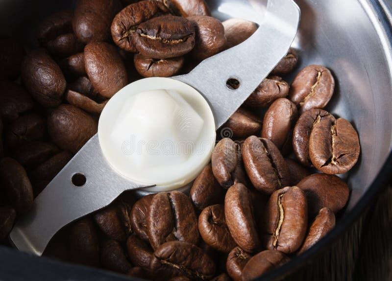 Chicchi di caffè in una smerigliatrice di caffè fotografie stock libere da diritti
