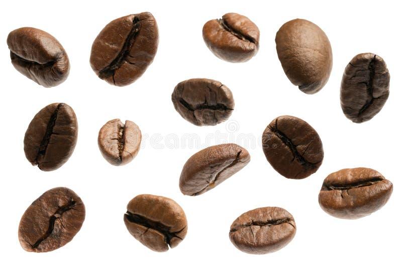 Chicchi di caffè di volo isolati immagini stock