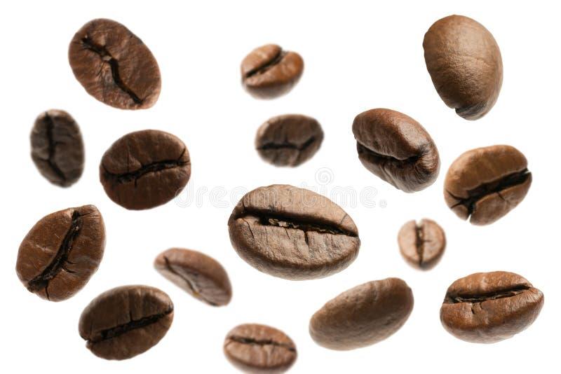 Chicchi di caffè di volo isolati su bianco immagine stock libera da diritti