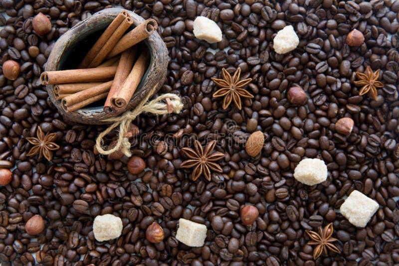 Chicchi di caffè, zucchero di canna, bastoni di cannella in una brocca, orario invernale fotografia stock