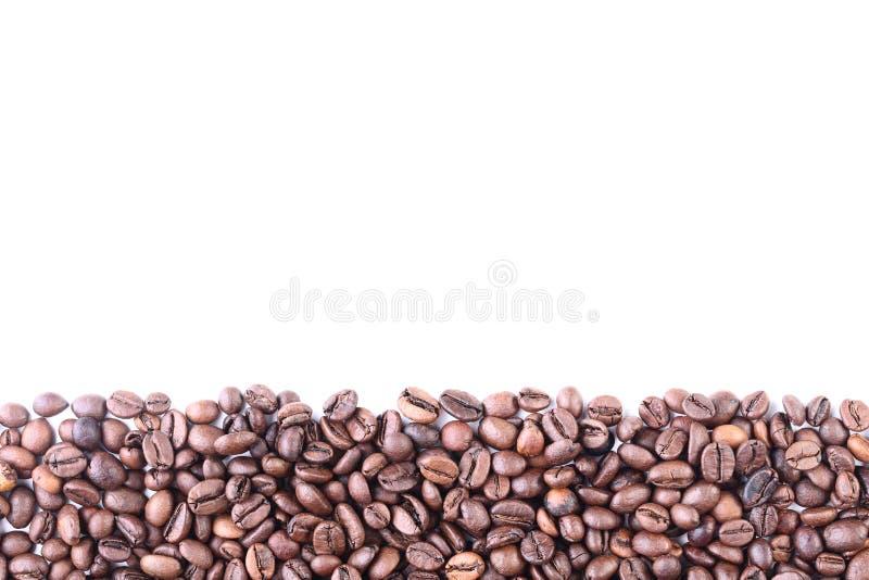 Chicchi di caff? fotografie stock