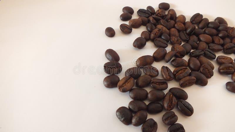 Chicchi di caff? su una priorit? bassa bianca immagini stock libere da diritti