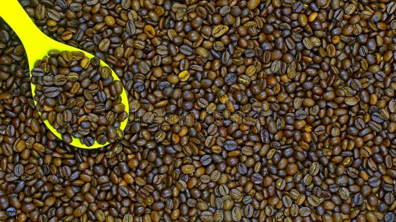 Chicchi e siviera di caffè arrostiti immagine stock libera da diritti