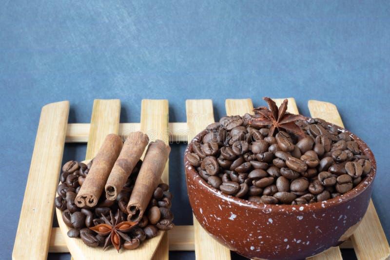 Chicchi e spezie di caff? fotografie stock libere da diritti