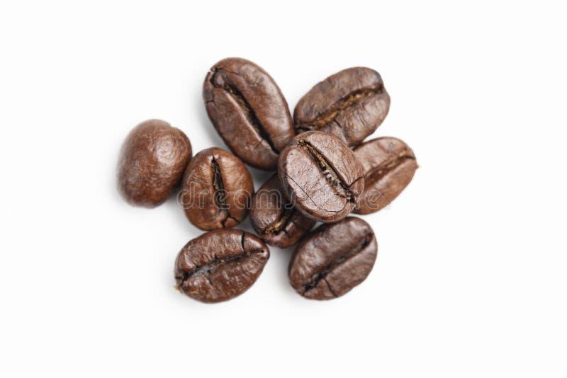 Chicco di caffè su priorità bassa bianca immagini stock