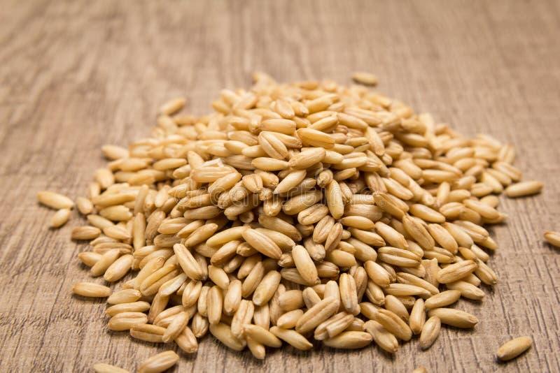 Chicco di grano dell'avena Mucchio dei grani sulla tavola di legno selettivo immagine stock
