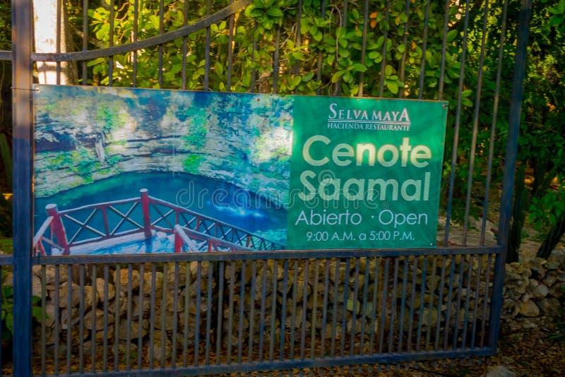 CHICHEN ITZA MEKSYK, LISTOPAD, - 12, 2017: Pouczający znak saamal blisko Chichen Itza cenote, Meksyk Uroczy cenote obrazy royalty free