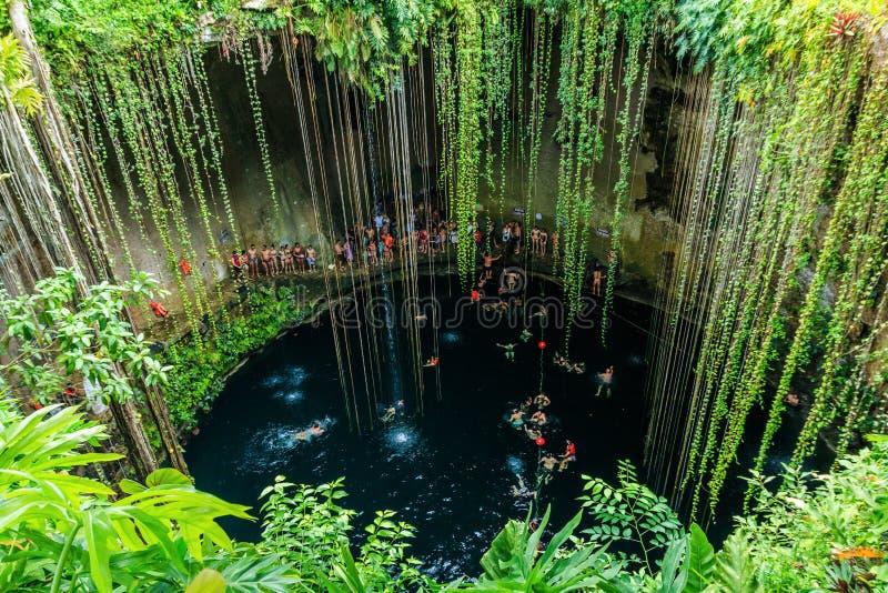 Ik-Kil Cenote, Chichen Itza, Mexico. royalty free stock photo