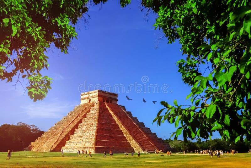 Chichen Itza pyramid p? bakgrunden av ljus bl? himmel Det mest ber?mda arkeologiska komplexet av mayaen i Mexico arkivbilder