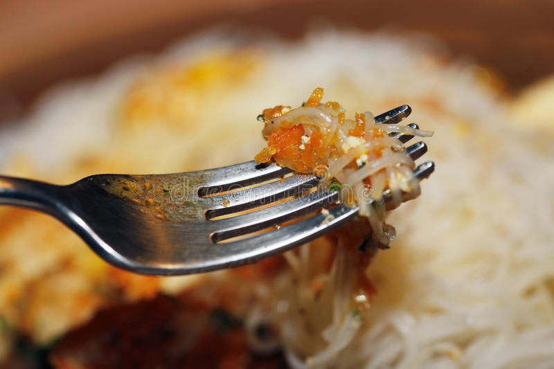 Chichen pastas with fork royalty free stock images