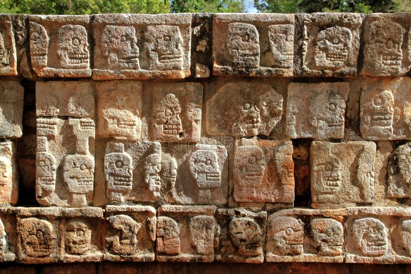 chichen väggen för tzompantlien för itzamayaskallar royaltyfria bilder