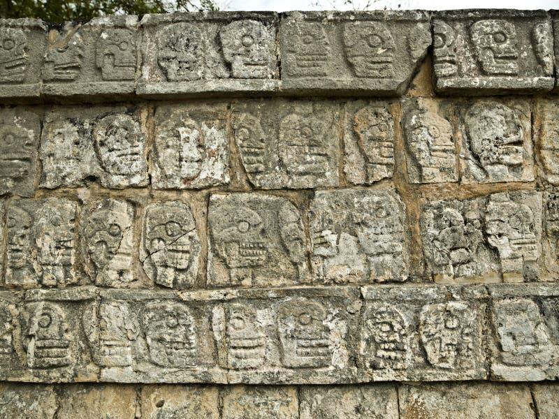 chichen väggen yucatan för itzamessicoskallar royaltyfri foto