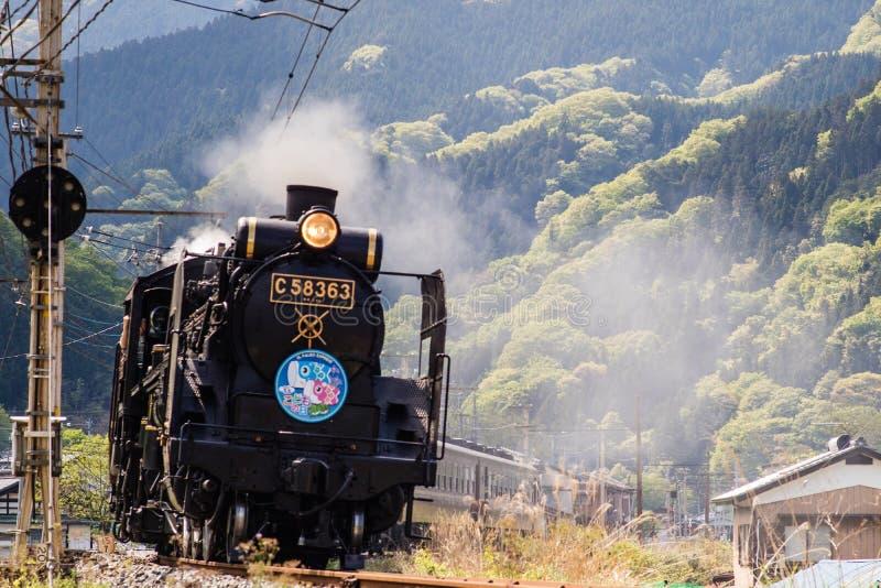 Chichibu-Dampf-Zug stockbild