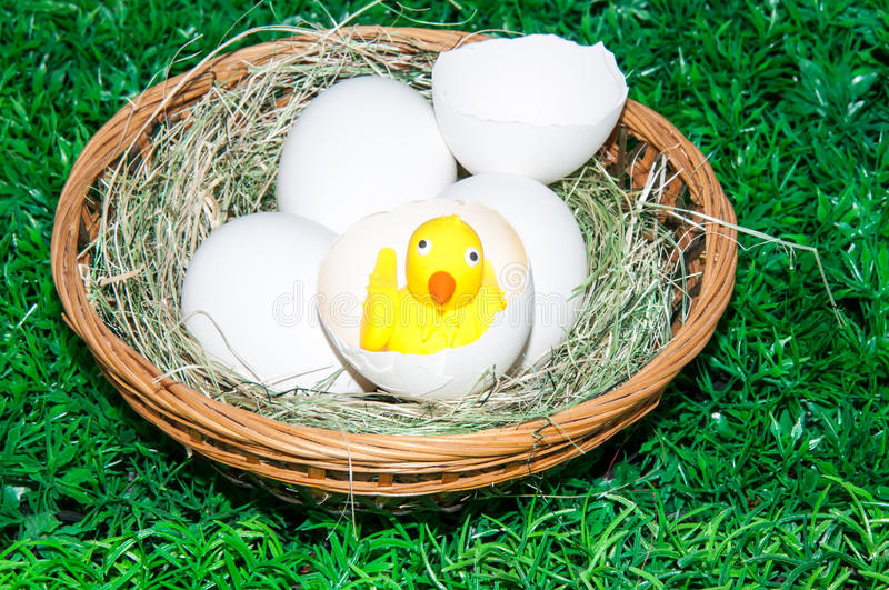Download Chick and Easter egg .. stock image. Image of traditional - 39500023
