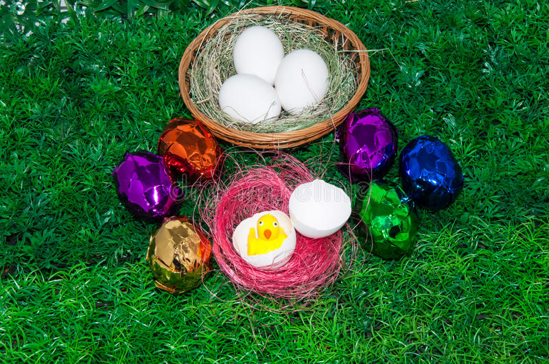 Download Chick and Easter egg .. stock image. Image of field, colorful - 39500165