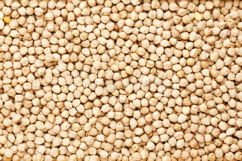 Chick peas background. Background of dried chick peas stock photos