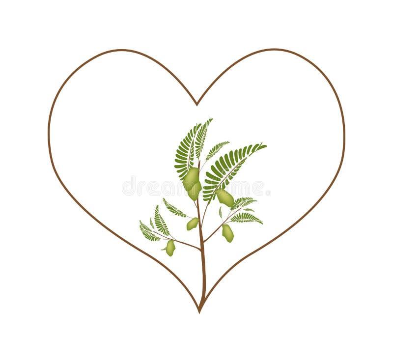 Chick Peas Plant em um quadro da forma do coração ilustração royalty free