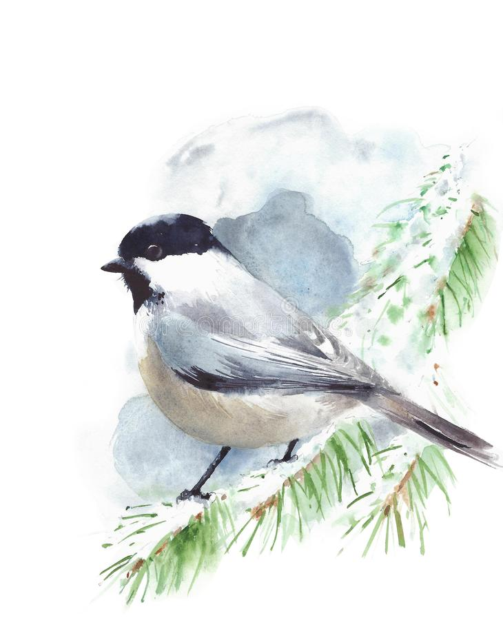 Chickadee bird sitting on the branch watercolor painting illustration isolated on white background. Chickadee bird sitting on the branch watercolor painting stock illustration