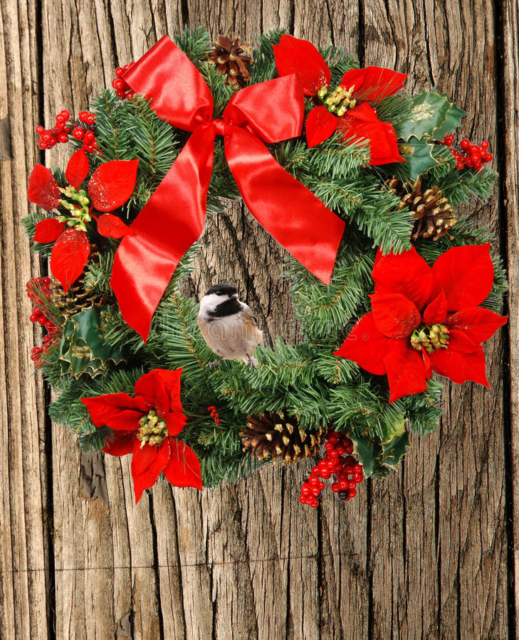 Chickadee van Kerstmis stock foto's