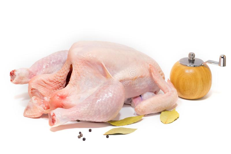 Chicke arrancado fresco Prato da carne foto de stock