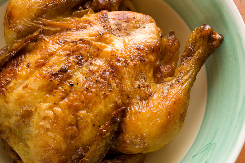 Chicken #3 stock image