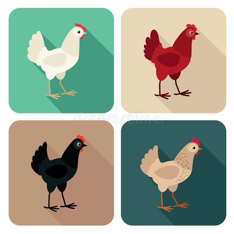 Chicken breeds icon set in flat style with long shadow stock illustration