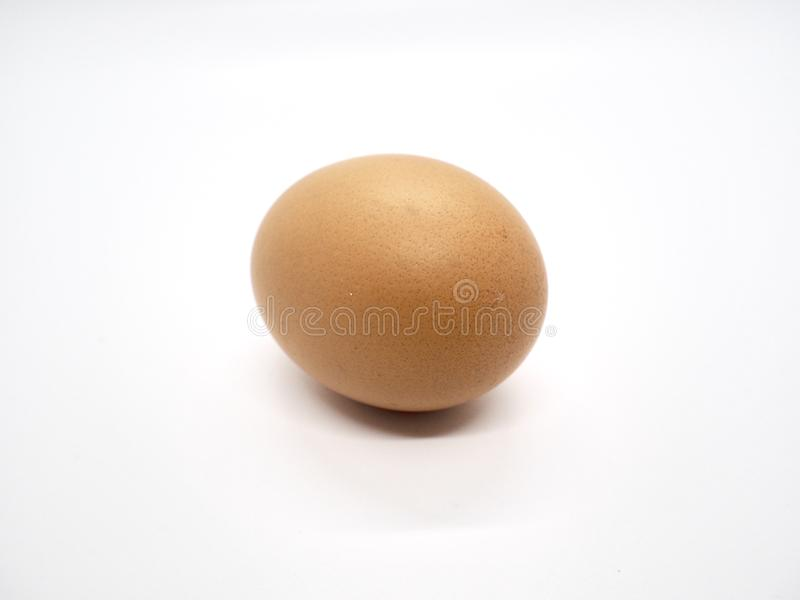 Chicken Brown Egg with white background stock photo