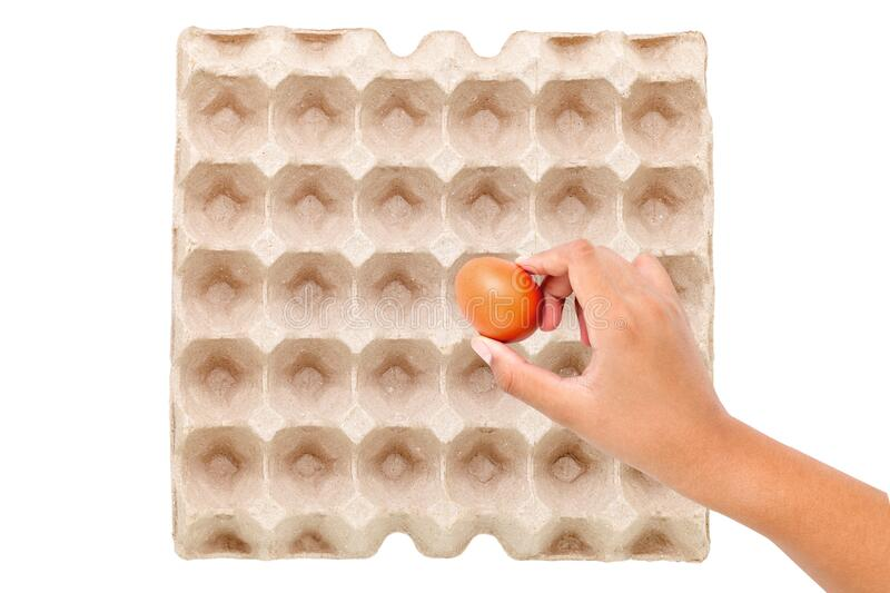 Chicken brown eggs in egg carton box with hand holding an egg on white background. Selective focus stock image