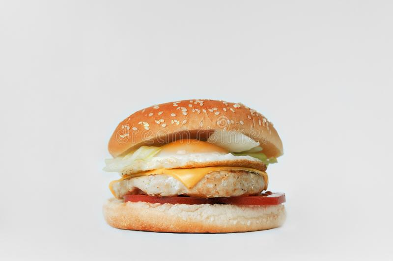 Chicken burger with egg and cheese on a white background royalty free stock photo