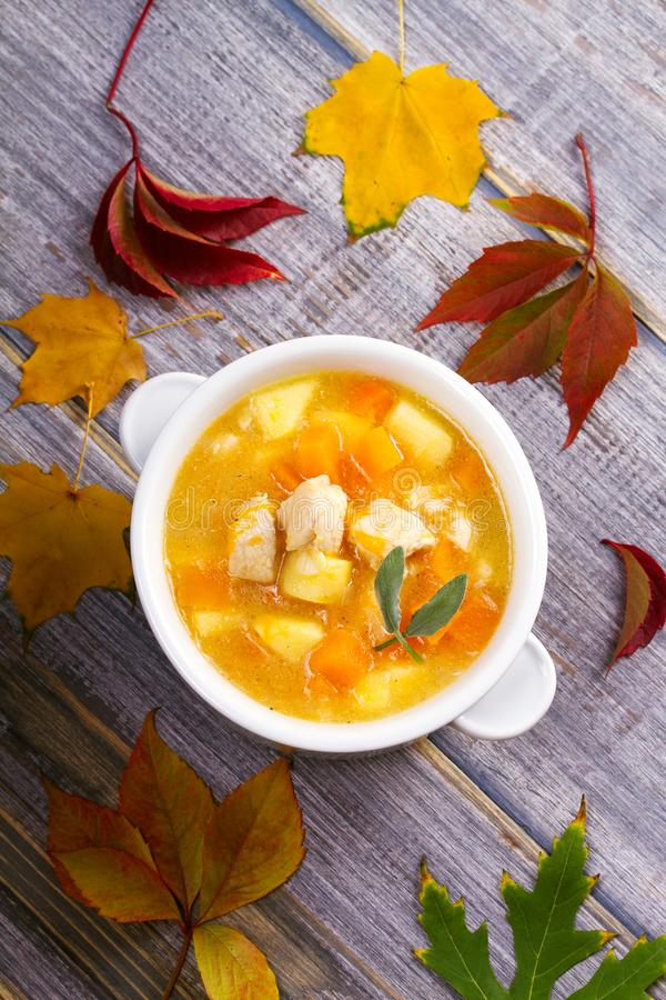 Chicken, butternut, apple ginger and sage stew. Pumpkin and chicken breast soup. View from above, top shot, vertical royalty free stock photo