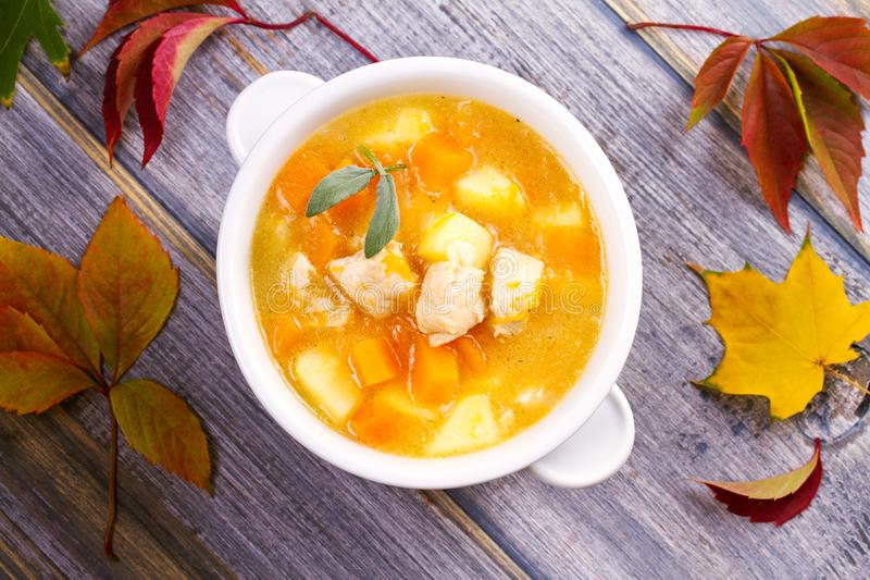 Chicken, butternut, apple ginger and sage stew. Pumpkin and chicken breast soup. View from above, top shot, horizontal stock images