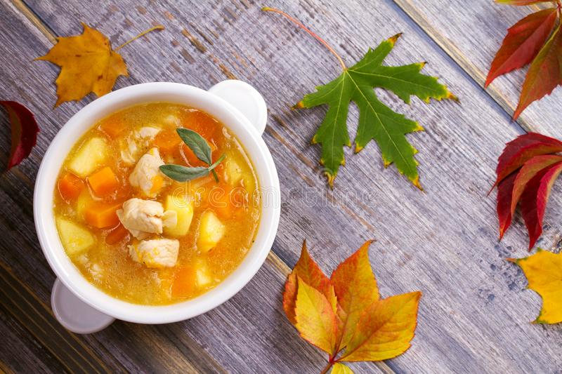 Chicken, butternut, apple ginger and sage stew. Pumpkin and chicken breast soup. View from above, top shot, horizontal stock photography