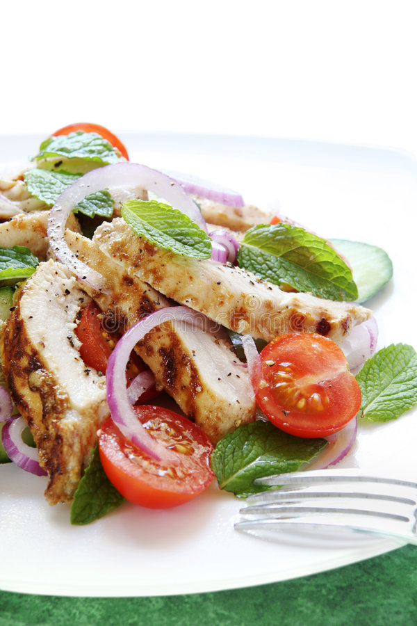 Chicken Cucumber and Mint Salad stock image